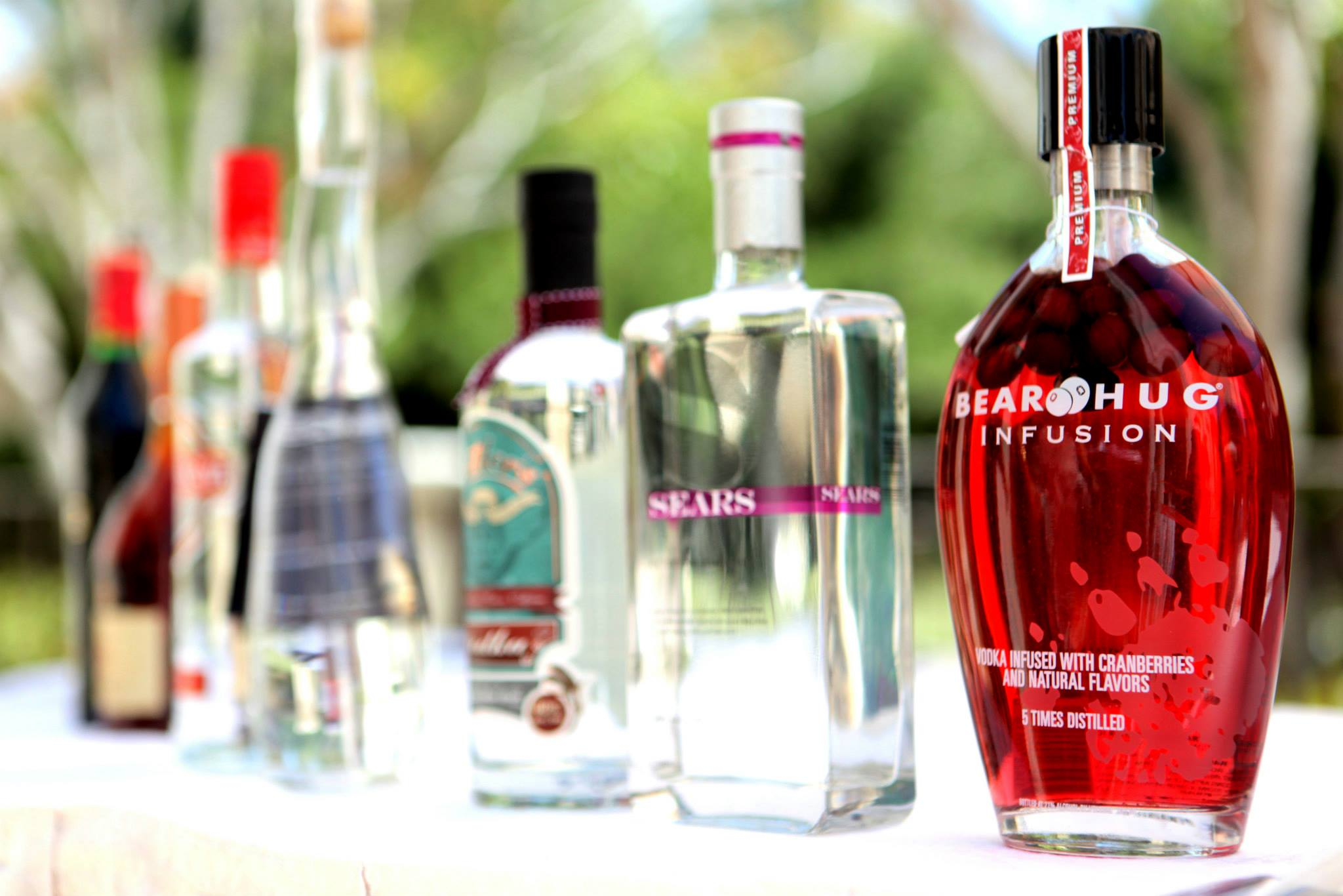 RTG The Different Types of Vodka